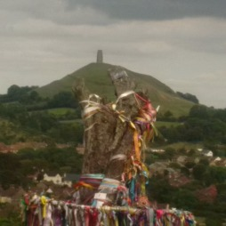 Holy Thornberry Tree, Wearyall Hill, looking at the Tor at Avalon, Glastonbury, England 2016